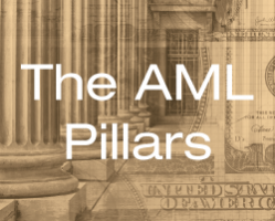 The AML Pillars