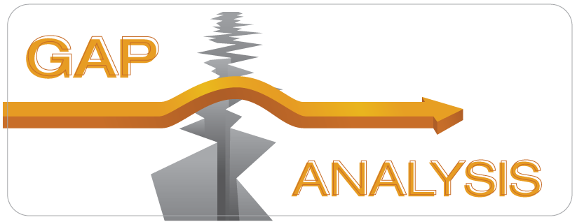 Understanding Risk Levels Through a Gap Analysis